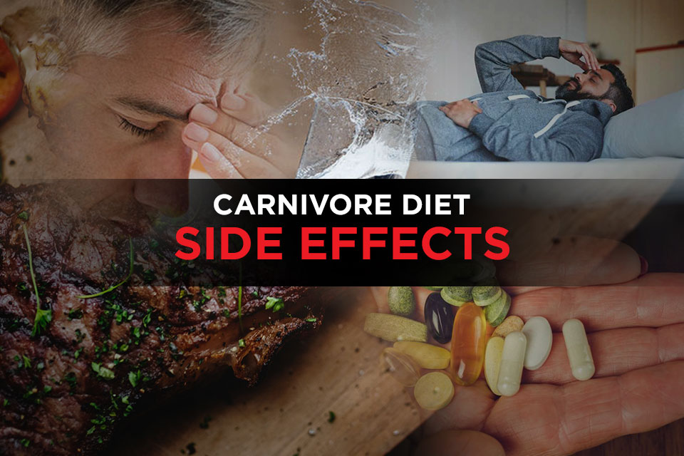 ccarnivore diet health risks