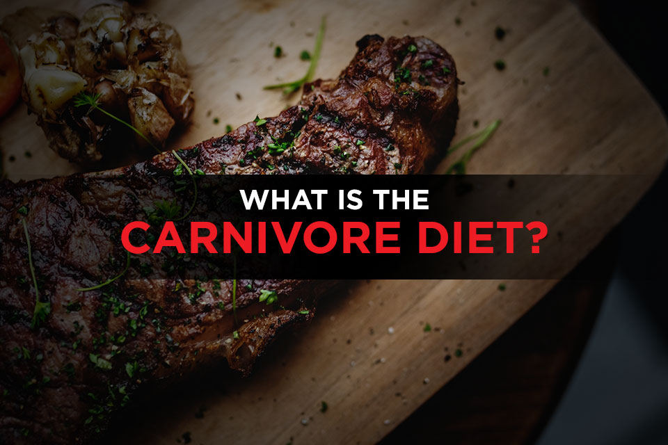 What is the carnivore diet Featured Image