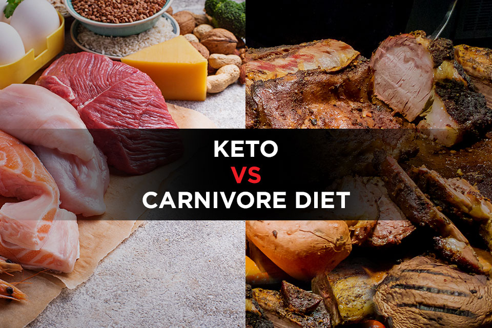 Keto Vs Carnivore Diet Featured Image