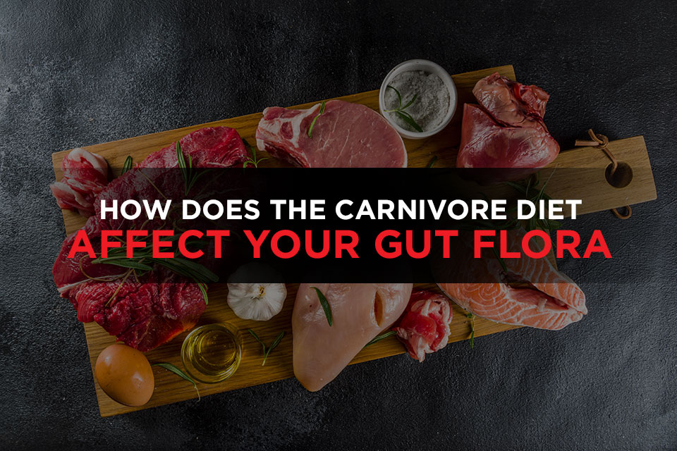 How Does The Carnivore Diet Affect Your Gut Flora Featured Image