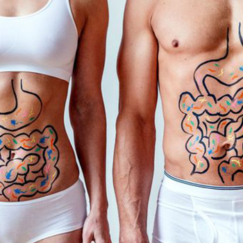 Gut Health of Man and Woman